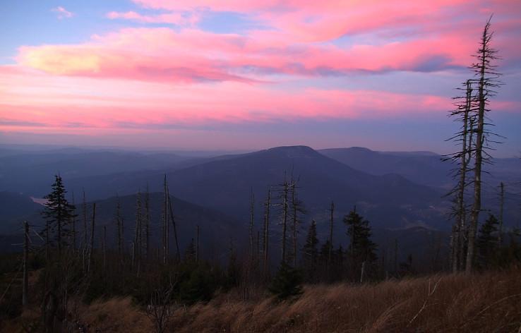 Smrk z Lysej hory (október 2010)