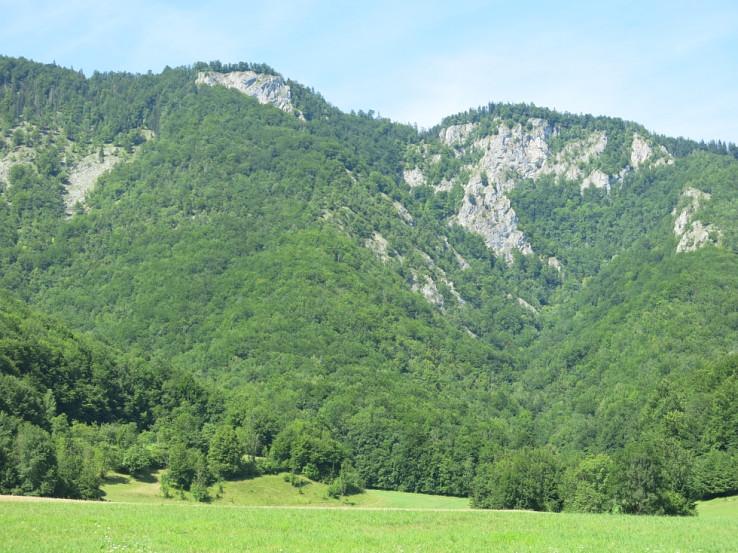 Krásavica Poludnica