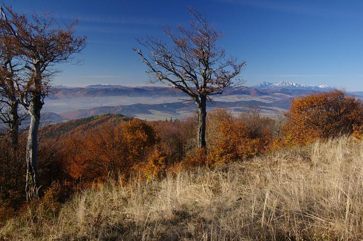 Kráľova hoľa a Tatry z Minčola (autor foto: Michal Kapr)