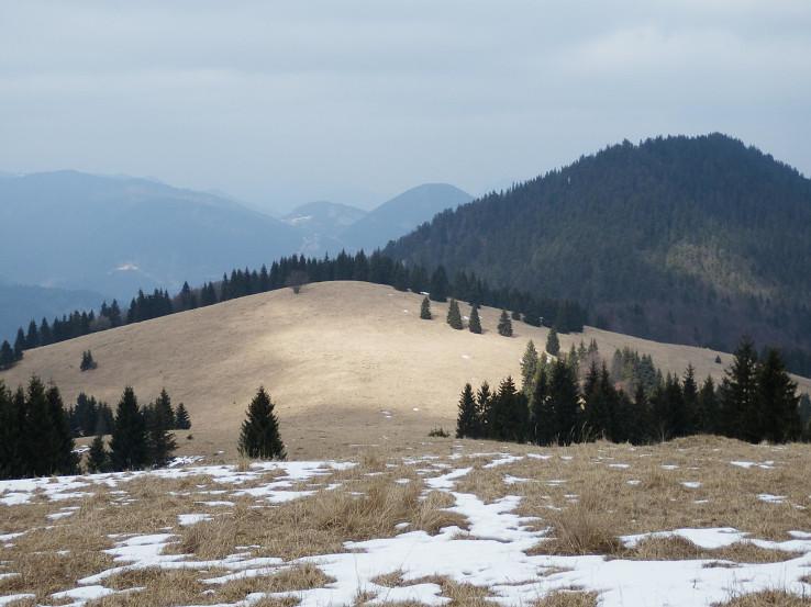 Brankovské lúky s odlesneným vrchom Rebro a Brankovom (Ostrý grúň) v pozadí Sidorovo (Hýrová) a Malinné