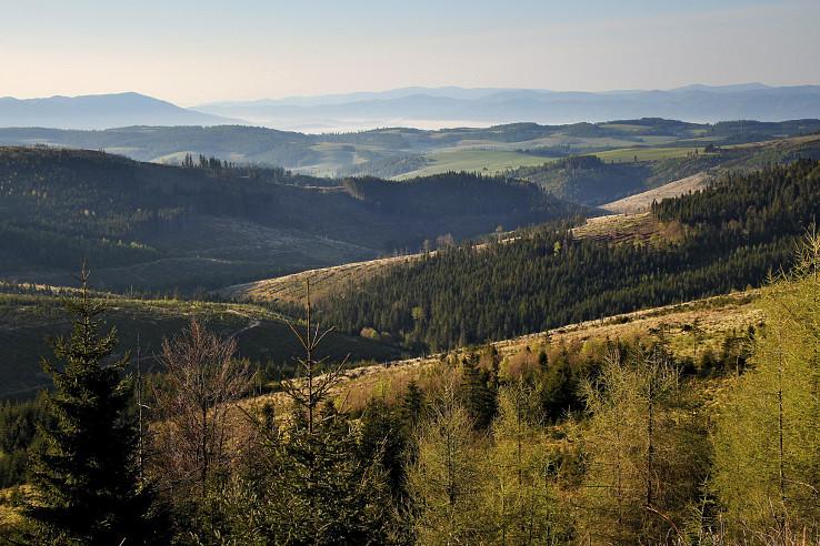 Levočské vrchy, ranný pohľad na juhovýchod