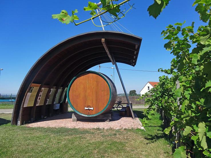 Hohenruppersdorf, expozícia odrodového viniča
