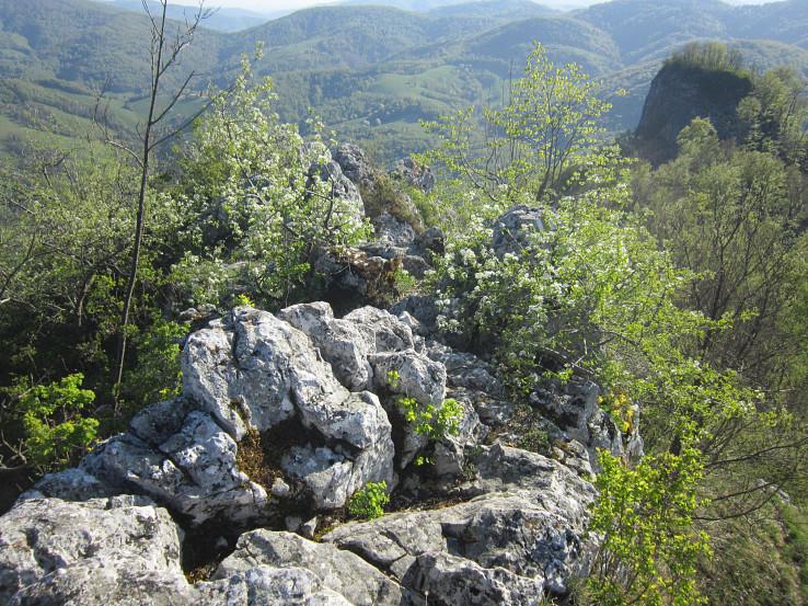 Hrebeň Hradovej