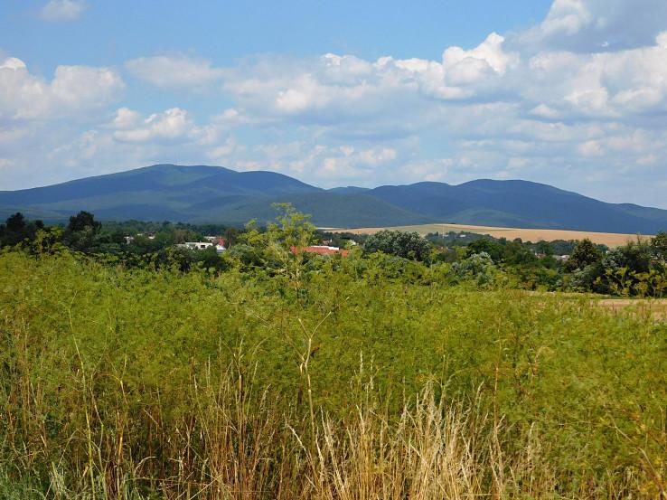Pohľad k Slanským vrchom
