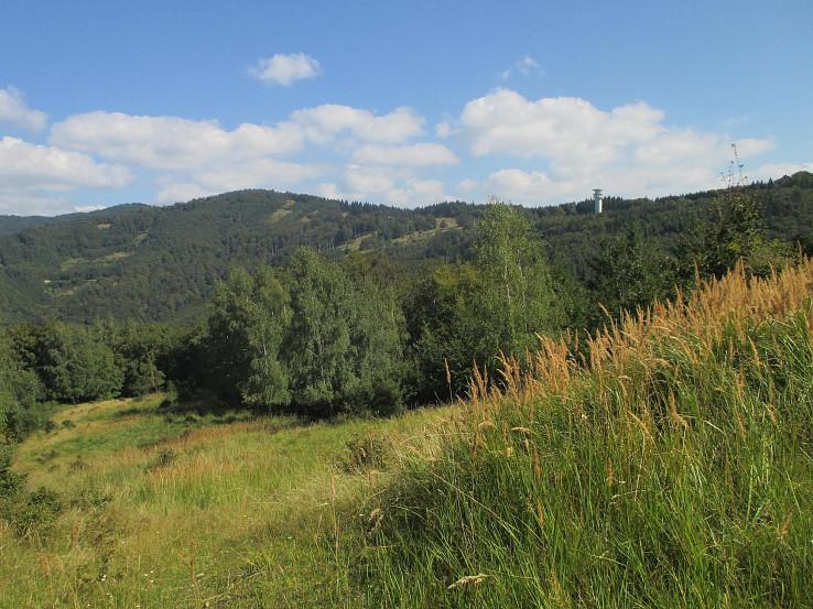 Suchý vrch a Kšinianska poľana z klesania do Kšinnej