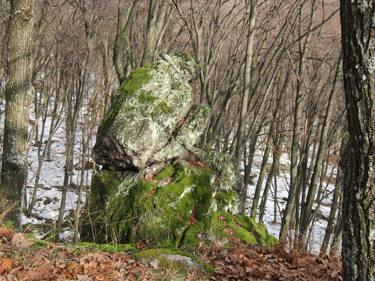 Kamenná žaba na Čajkovskom bralí