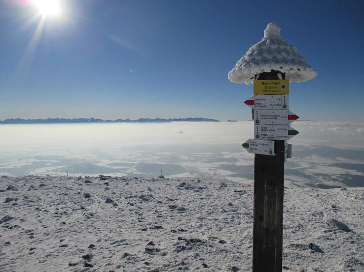 Pohľad z Babej hory na Tatry (autor foto: Igor Bazovský)