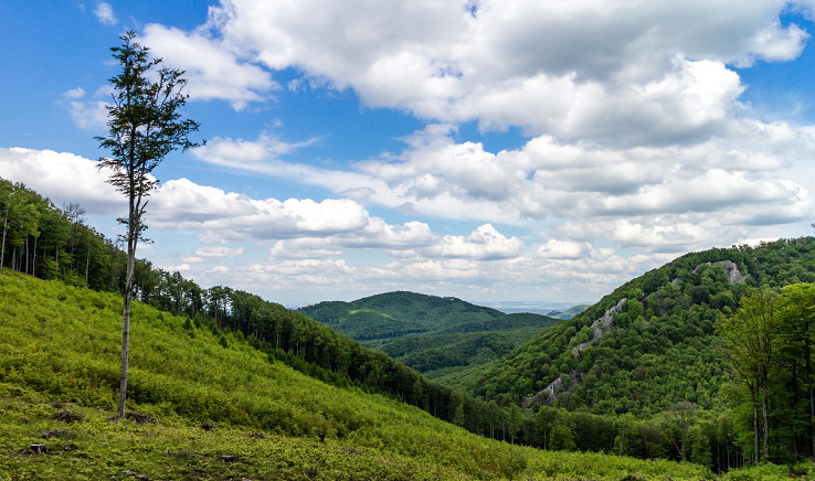 Výhľad z dolinky medzi Vysokou a Taricovými skalami