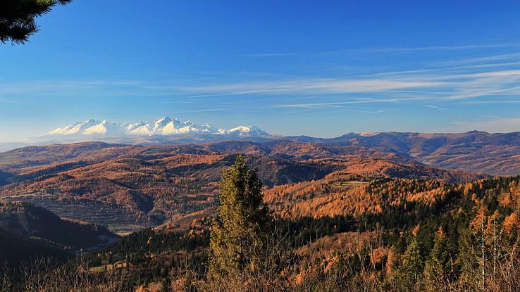 Tatry a Levočské vrchy z Bachurne