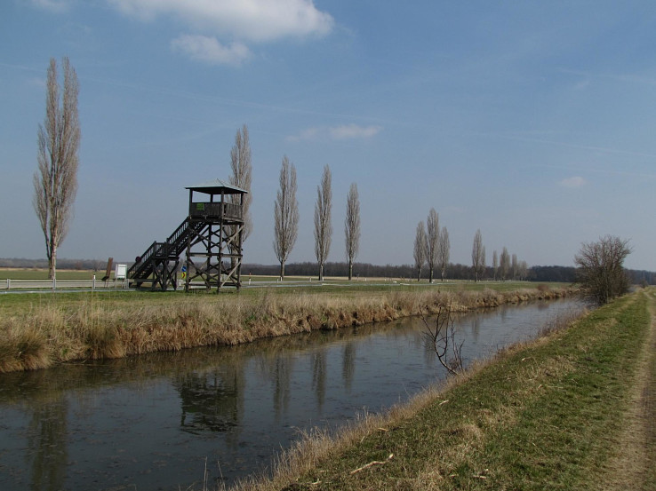 Pozorovateľňa vtáctva pri Cahnove (Hohenau an der March)