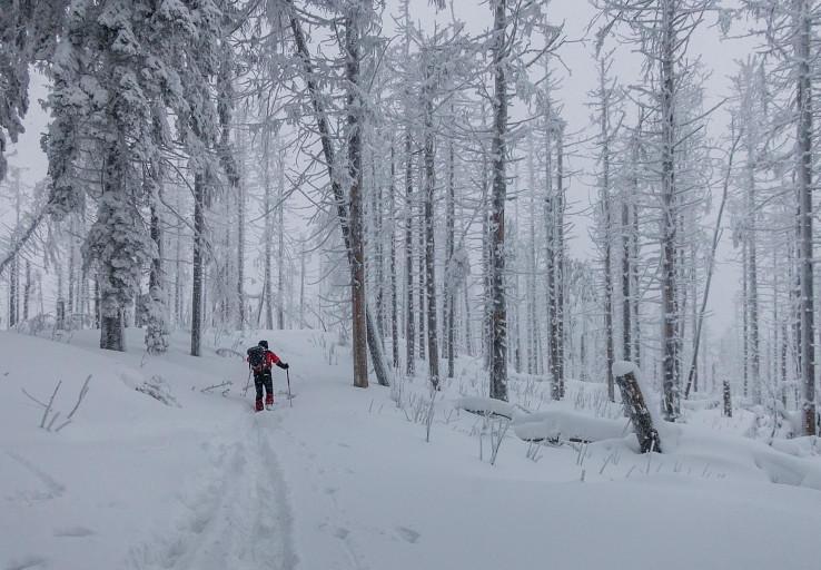 Sibírske podmienky na hrebeni Veľkého Polomu