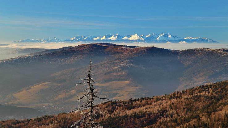 Kloptaň - pohľad na Tatry, vpredu Hnilecké vrchy (Bukovec)