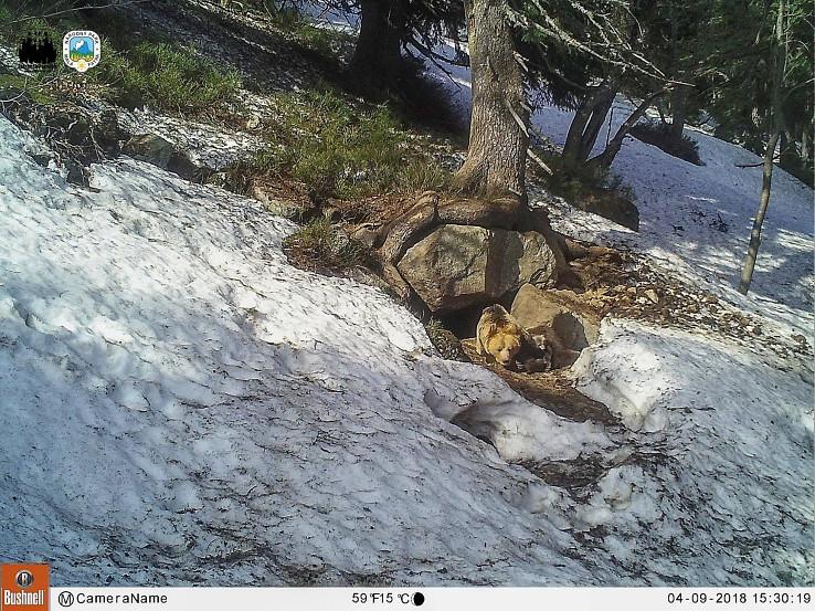 Medvedí brloh v Malej Fatre, foto Michal Kalaš