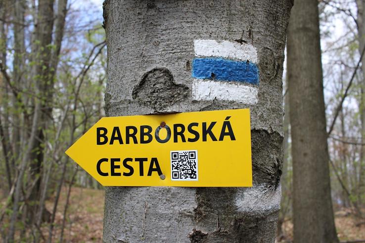 Značka Barborskej cesty na vrchu Kozlinec nad Banskou Bystricou