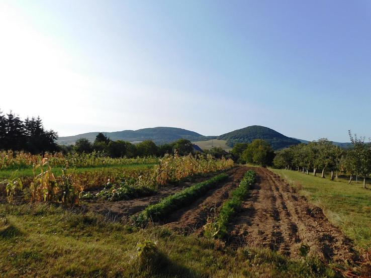 Spoza záhrad Zámutova pohľad na Drinu a Valenčicu