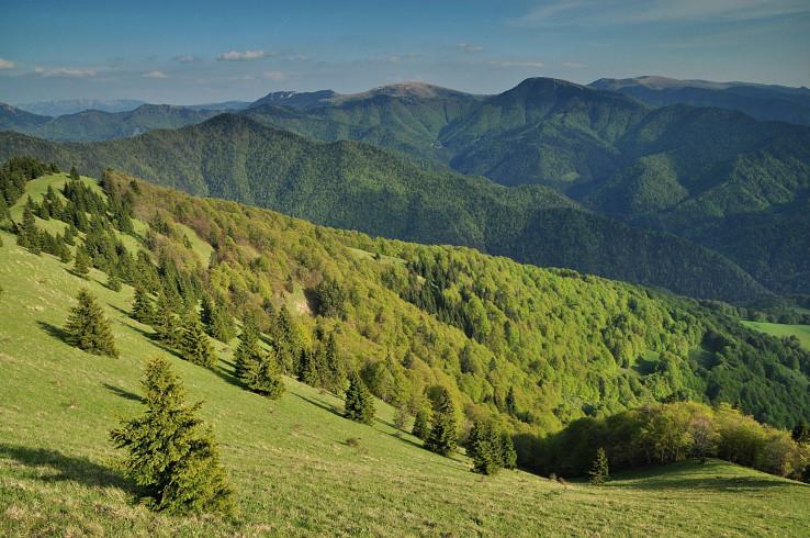 Jarné lesy a fatranské dominanty z Lysca