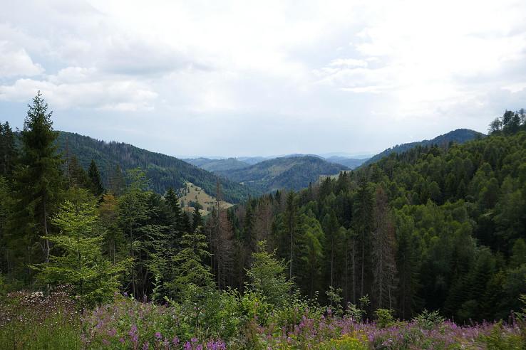 Výhľad na Muránsku planinu