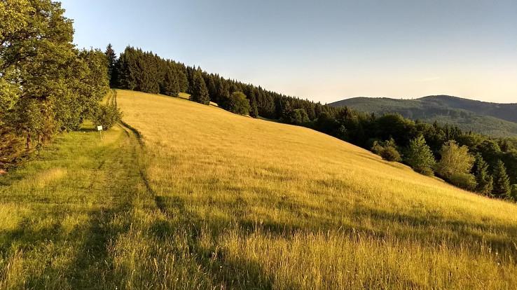 Zlaté Biele Karpaty
