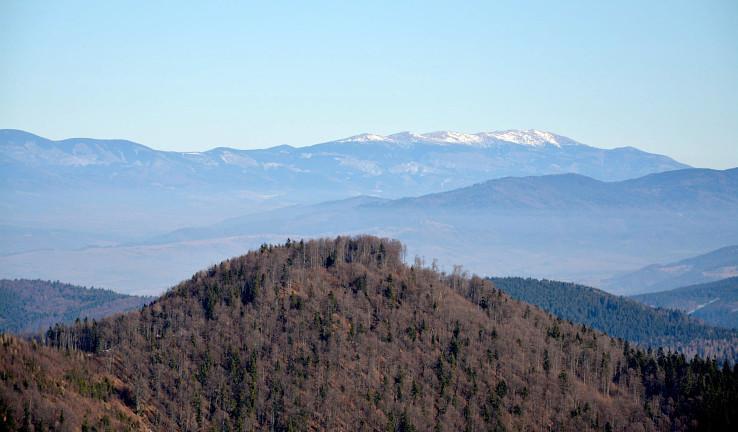 Kráľovohoľské Tatry z Hrbu