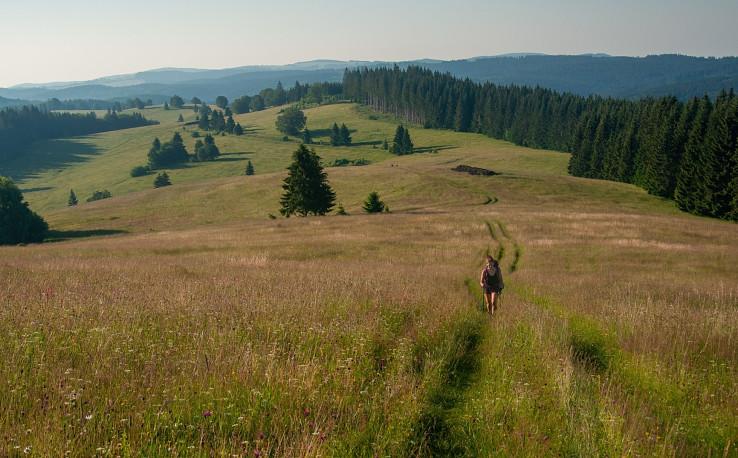 Výhľad z kopca Zákľuky