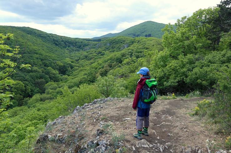 Výhľad do doliny Hlboča z Náučného chodníka Molpír