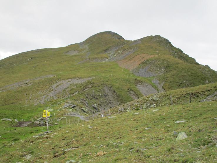 Eisenhut