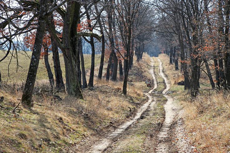 Krupinská planina