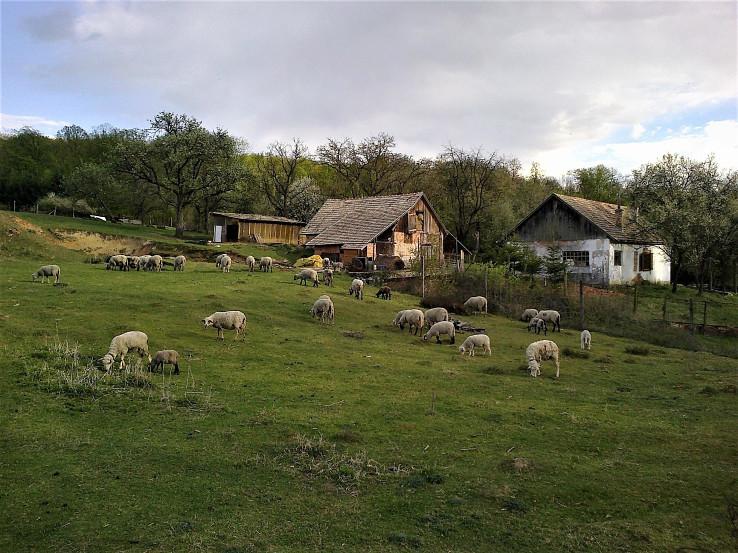 Osada Kúpeľ