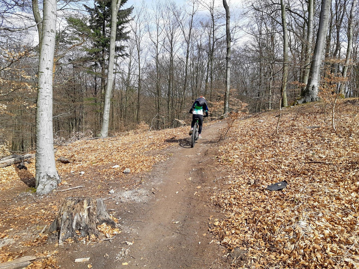 Trail Slalomka