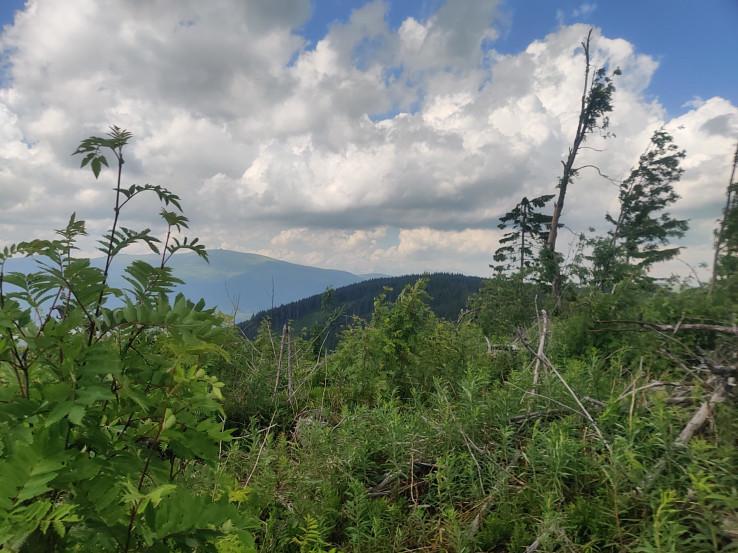 Výhľad na Nízke Tatry a v pozadí črtajúce sa Vysoké Tatry