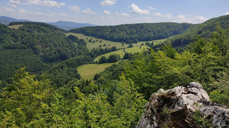 Výhľad z Česanej hory