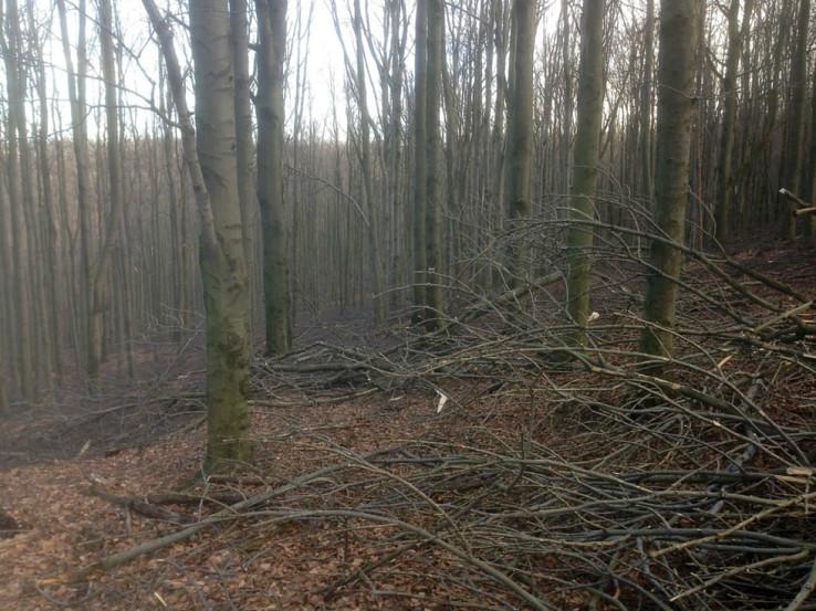 Okolie Zochovej chaty bolo kalamitou postihnuté asi najviac (chodník zo sedla pod Skalnatou k sedlu Čermák)