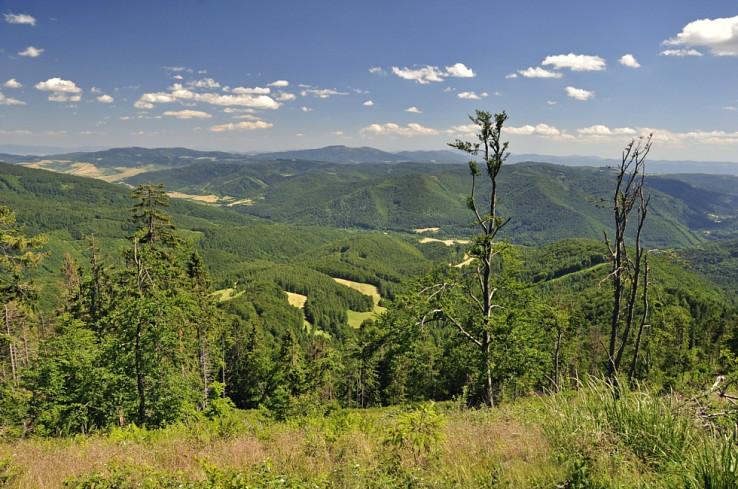 Výhľad od Zámčiska do doliny Tichého potoka