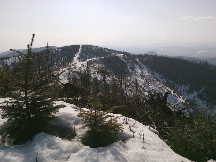 Na Veternom vrchu, smer západ a Tatry v opare