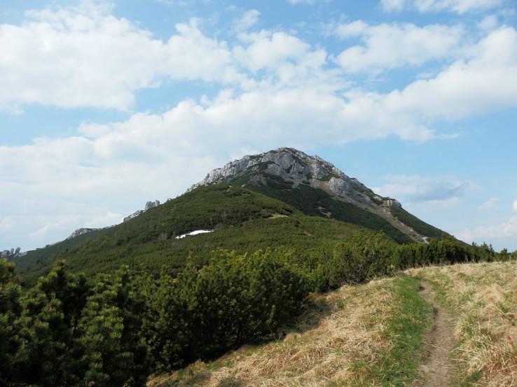 Sivý vrch od sedla Priehyba