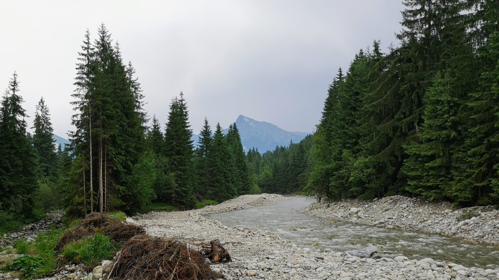 Regulácia toku rieky Belá vo Vysokých Tatrách v území európskeho významu