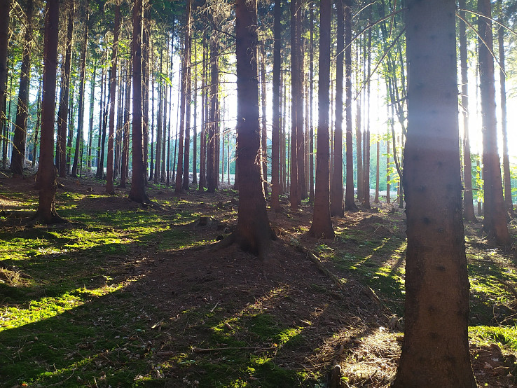 Hra svetla a tieňa