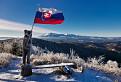 macko s vlajkou na Veternom vrchu / 1.0000