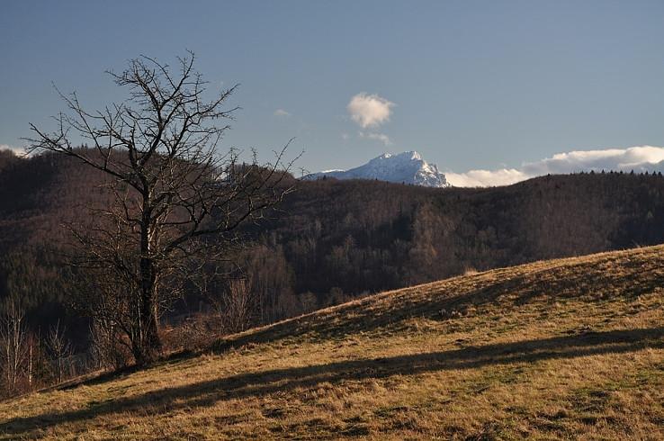 Z Belanského vrchu