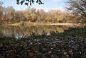 Jesenná od Moravy / 1.0000