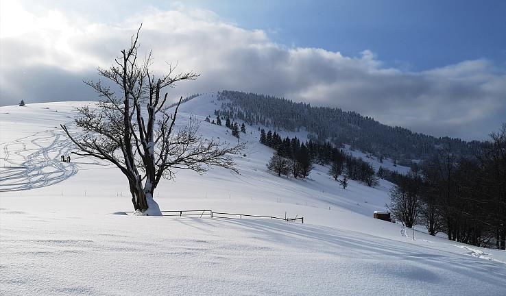 Skialpinistická pohoda