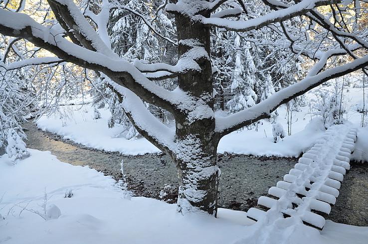 Zimná idylka vo Veľkom Sokole