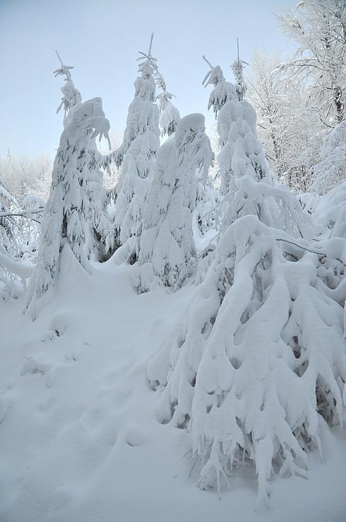 Snehové postavičky pri Hostinci