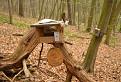 Pre vtáčiky lesoparku