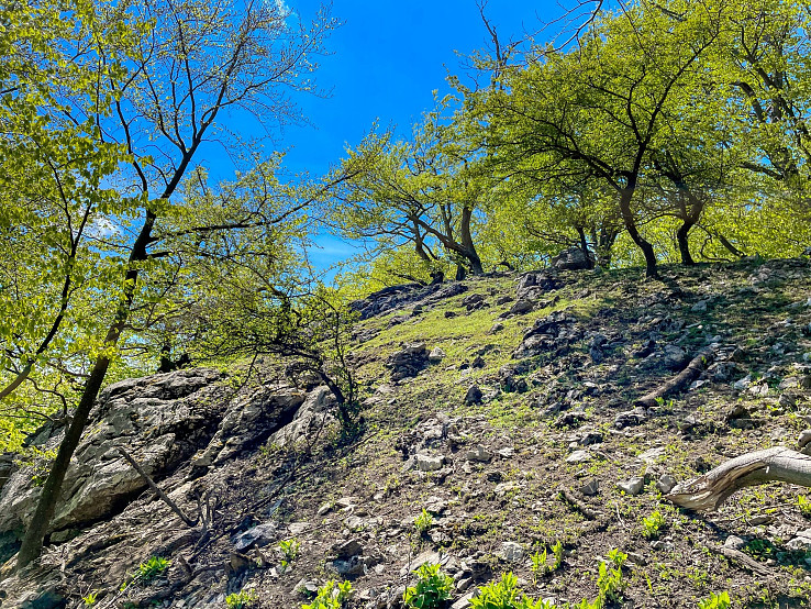 skalné bralo pod kopcom Mešťanková