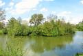 Rybník v parku s ostrovčekom