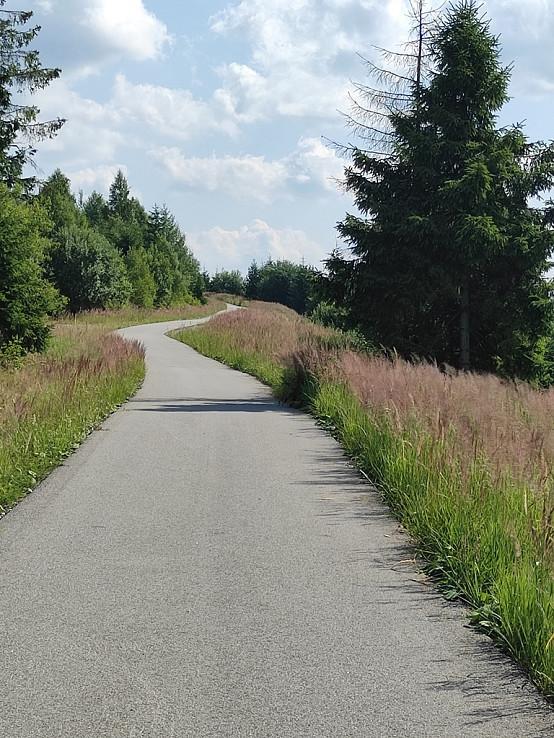 Cestičká s trávami