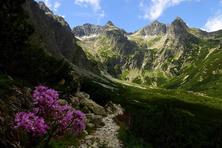Leto na horách