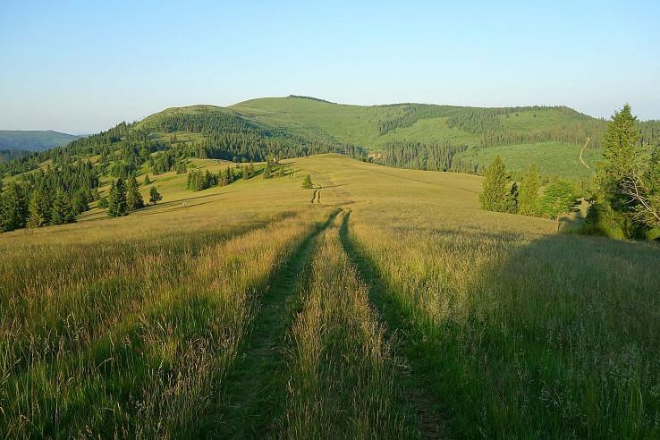 Najkrajšia lúka Levočských vrchov