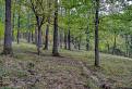prírodná rezervácia Kamenec